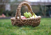 Picknickers